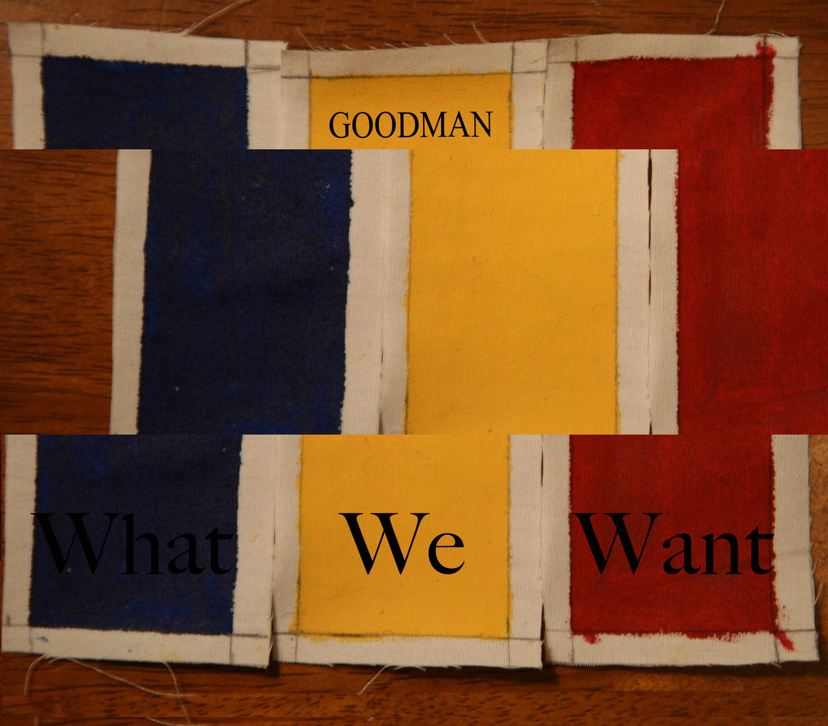 Cover of Goodman's 2012 release,  What We Want