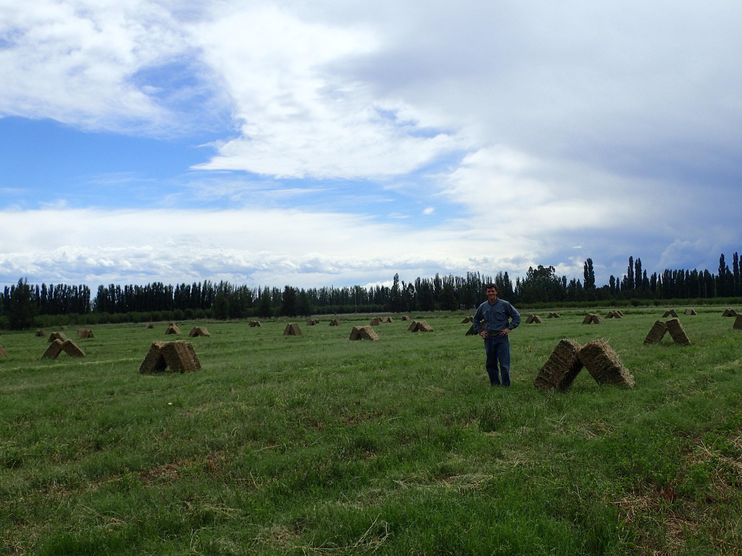 The DeSa Family farm in Argentina