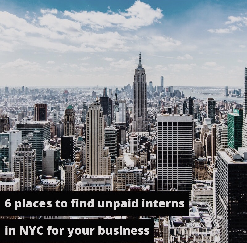 NYC interns