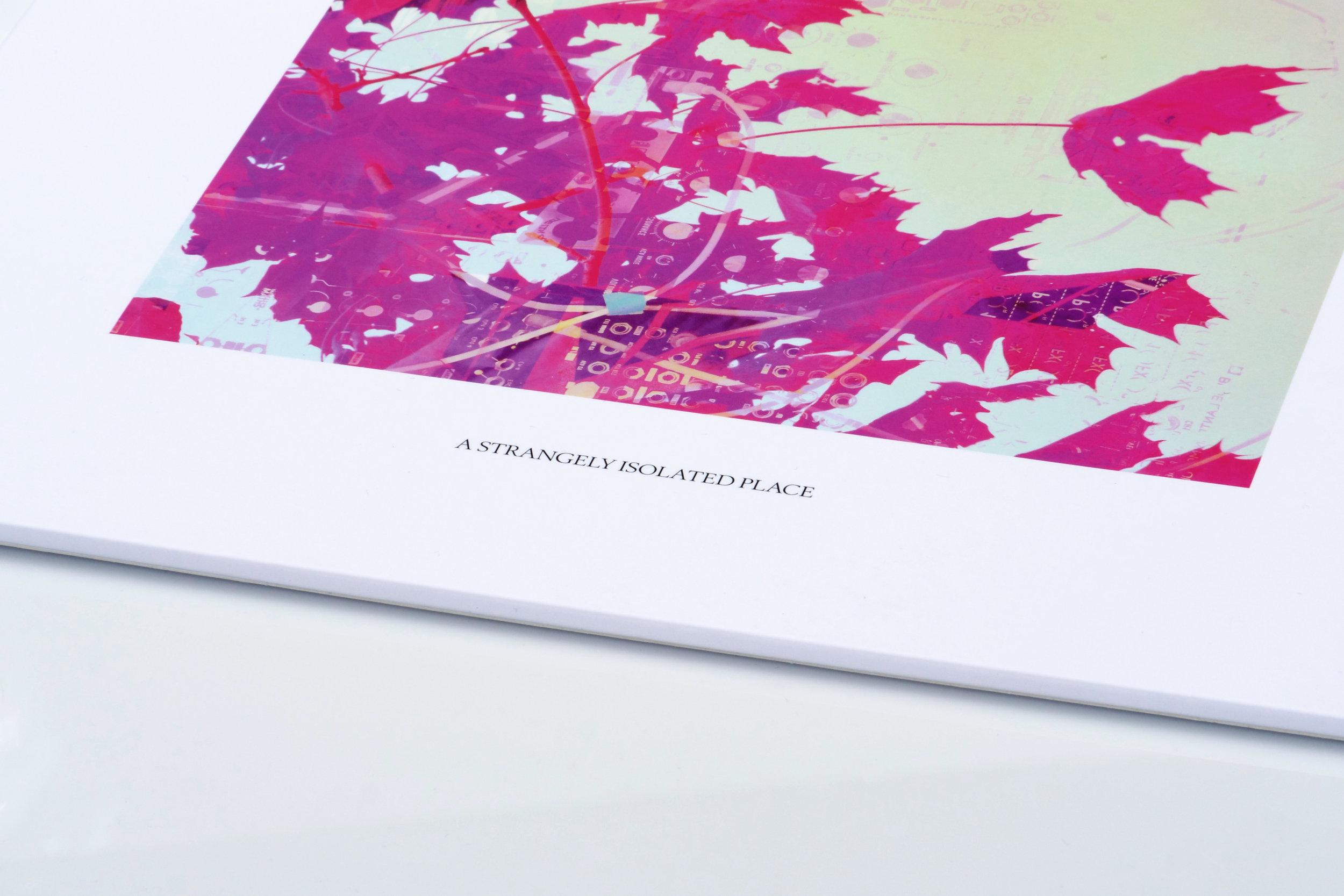 ASIPV014 2 Front.jpg