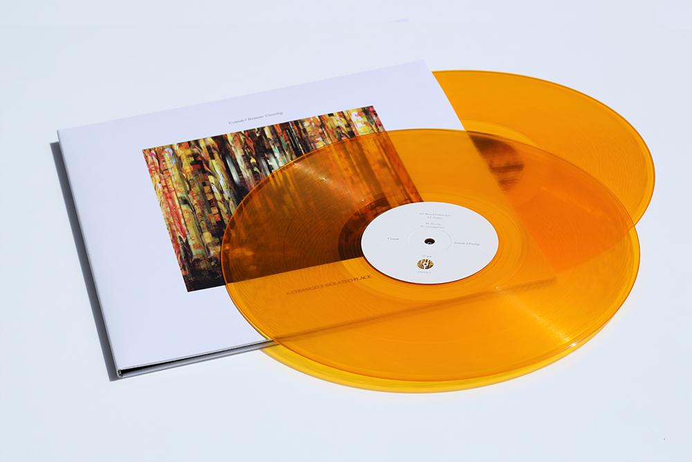 ASIPV017_Front_Vinyl_Stacked_B_1000.jpg