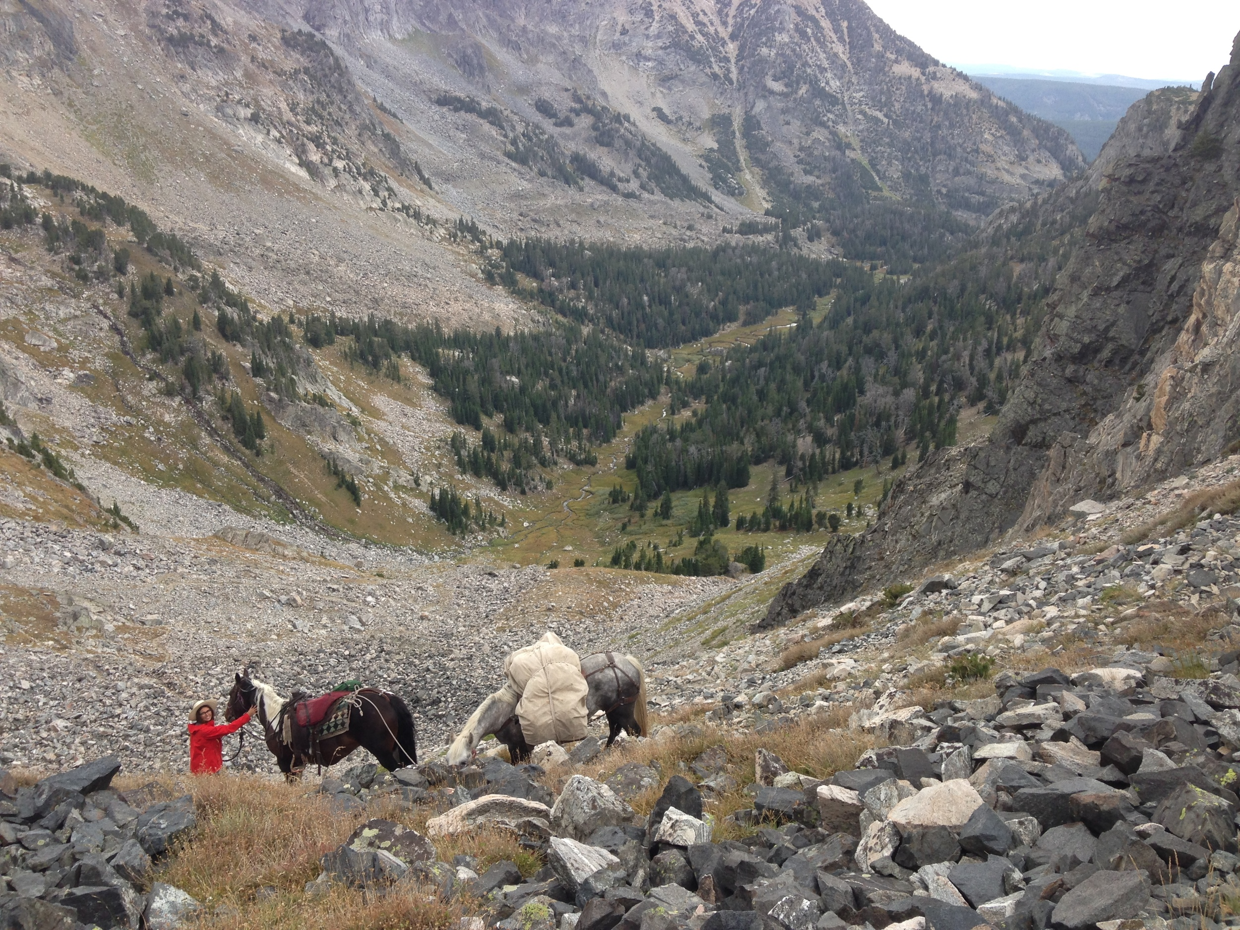 Me and the ponies coming through mountain pass.  Grizzly country!