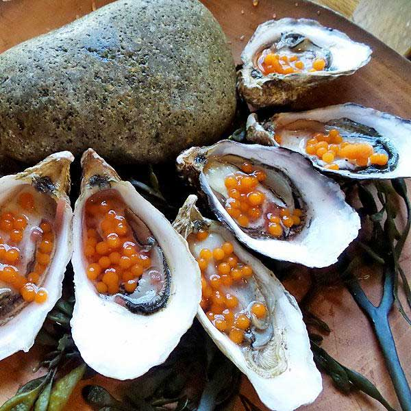 Oysters at Juniper and Ivy in San Diego (photo credit This Tasty Life)