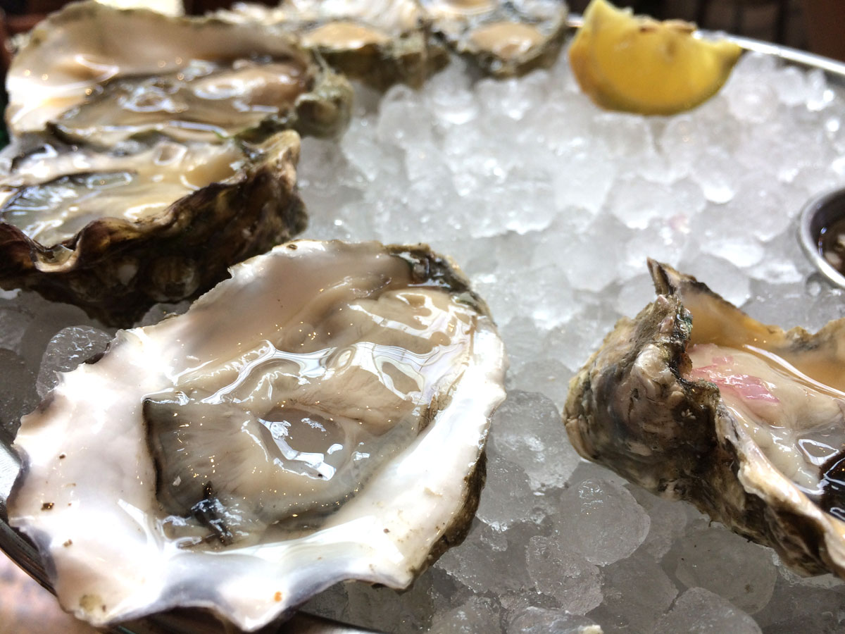A large selection of oysters, ask your server to describe them so you get the ones you like.