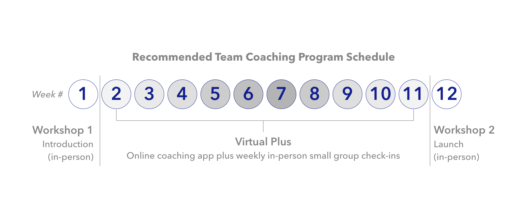 Strategy-of-mind-team-coaching-Schedule.png