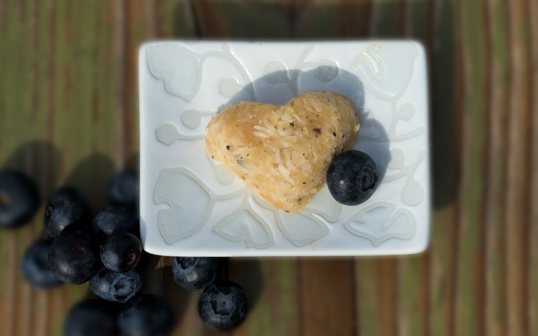 BlueberryCoconut Fudge.jpg