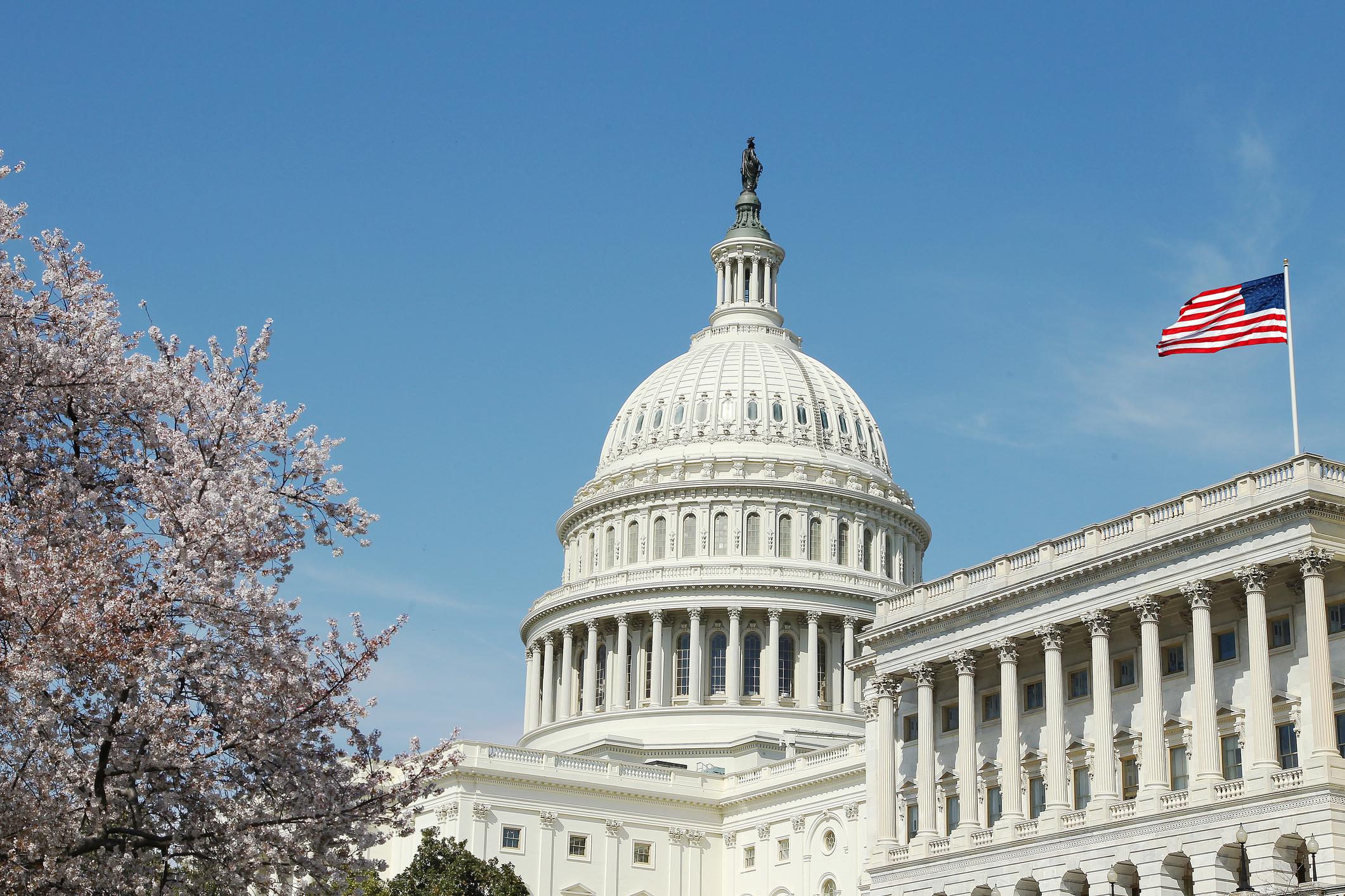 US_Capitol_building_spring_trees_fullsize_12[1].jpg