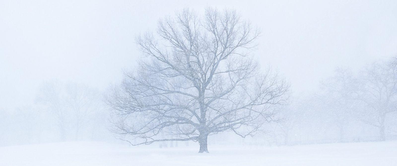 Winter-storm-Stella-newport-RI.jpg