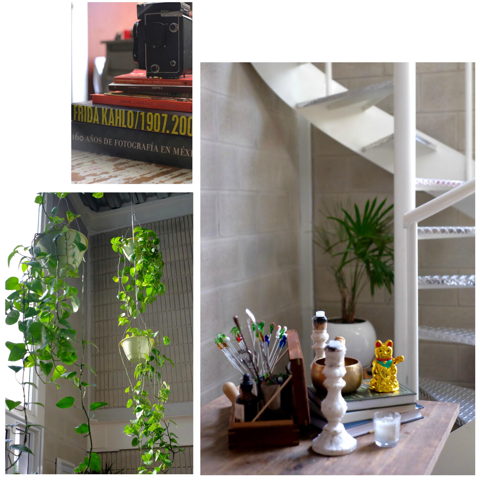 tais kuri himalayan book cafe home apartment