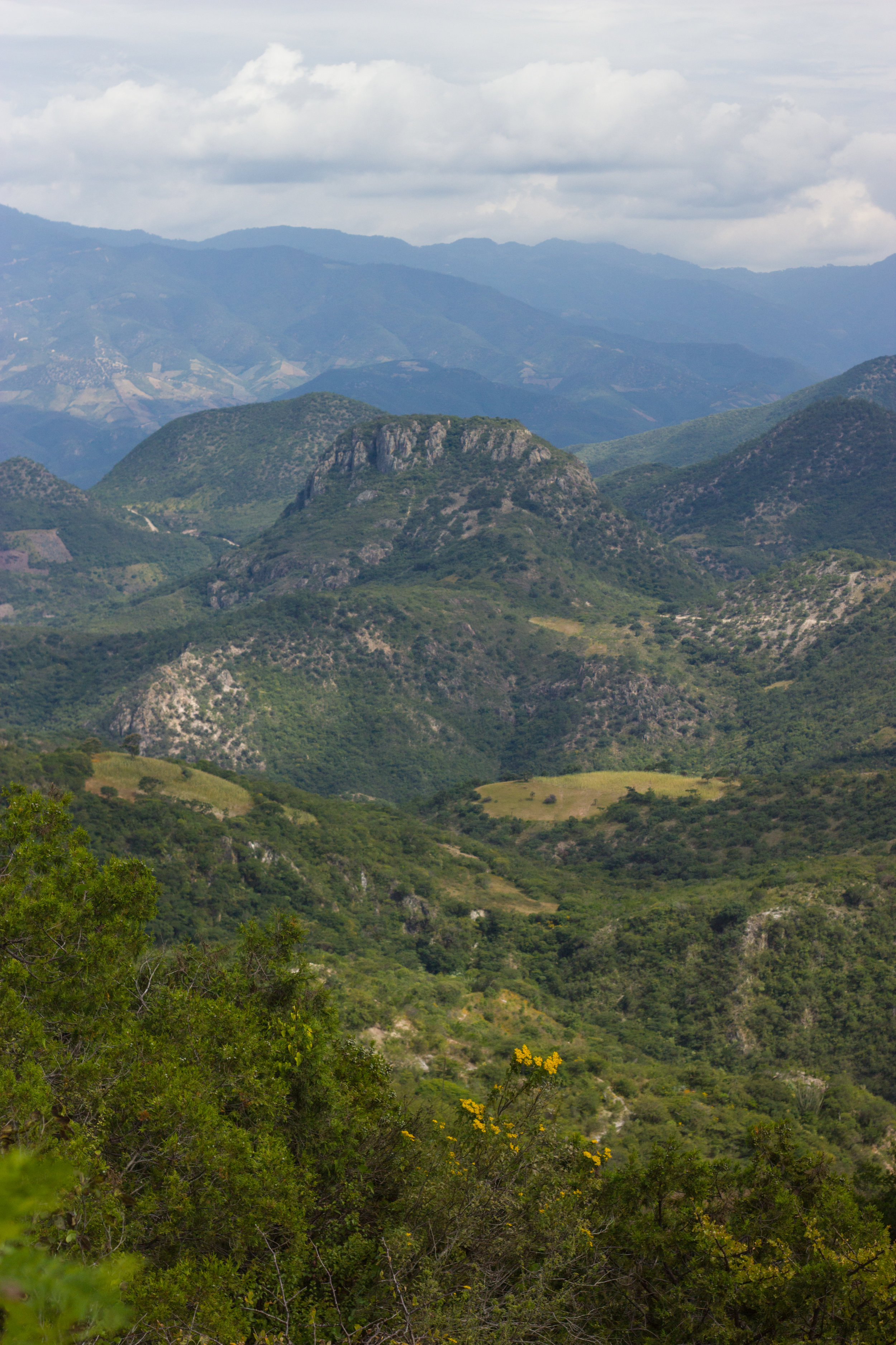 oaxaca mountain landscape by leah pellegrini for thread caravan.jpg