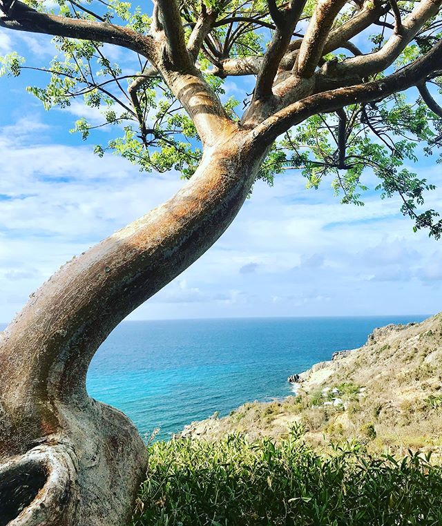#paintinginspiration #stbartslife