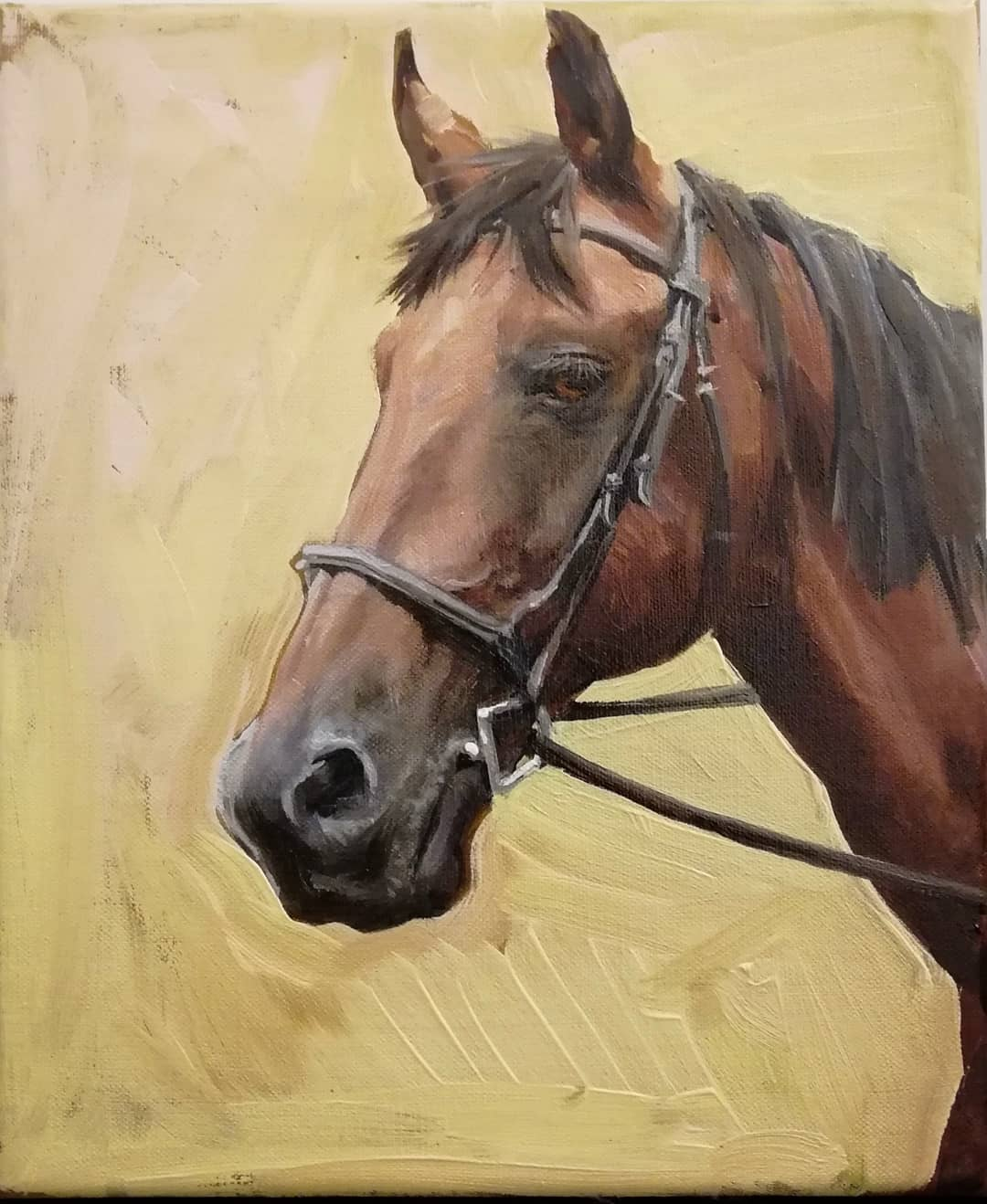 Equine oil portraits from photo