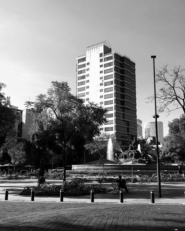 When in Colonia Roma.... . . . . . #Mexico#roma#coloniaroma#blackandwhitephoto#style#photography#mexicocity#travel#trip#adventure