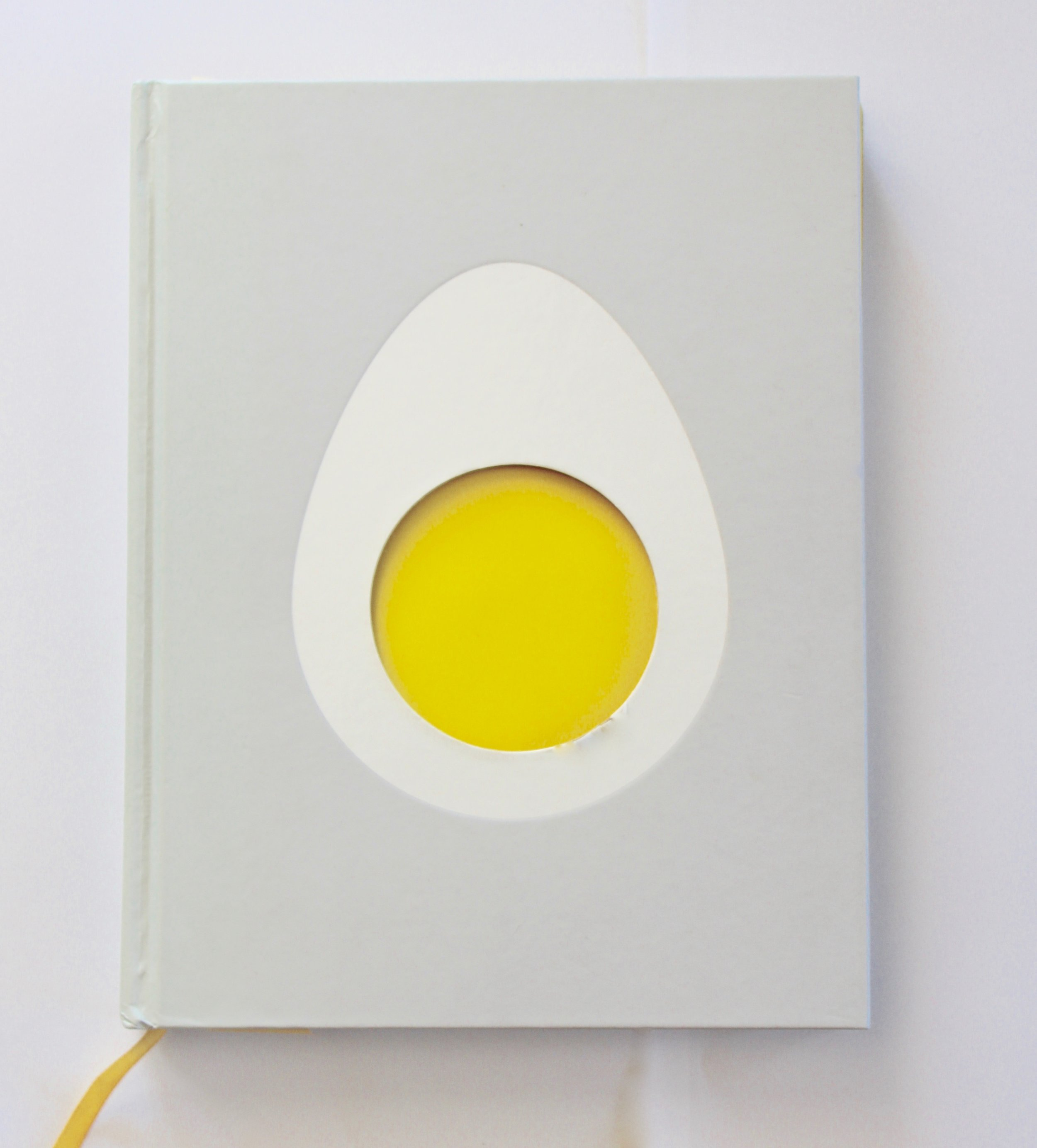 Egg,  Blanche Vaughan, Orion, design by Clare Skeats