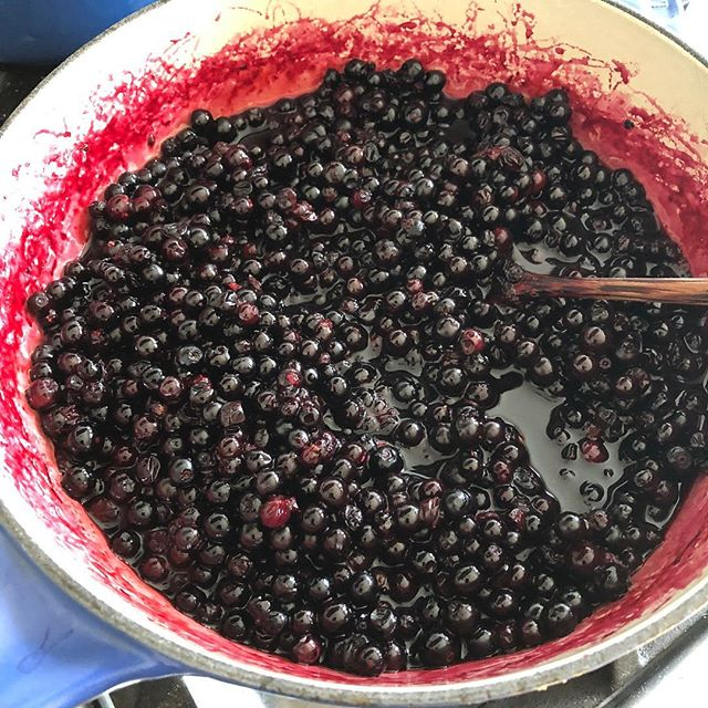 Been out of the unfarmed game for a bit..life gets in the way sometimes :) but all is well. Huckleberries are in!
