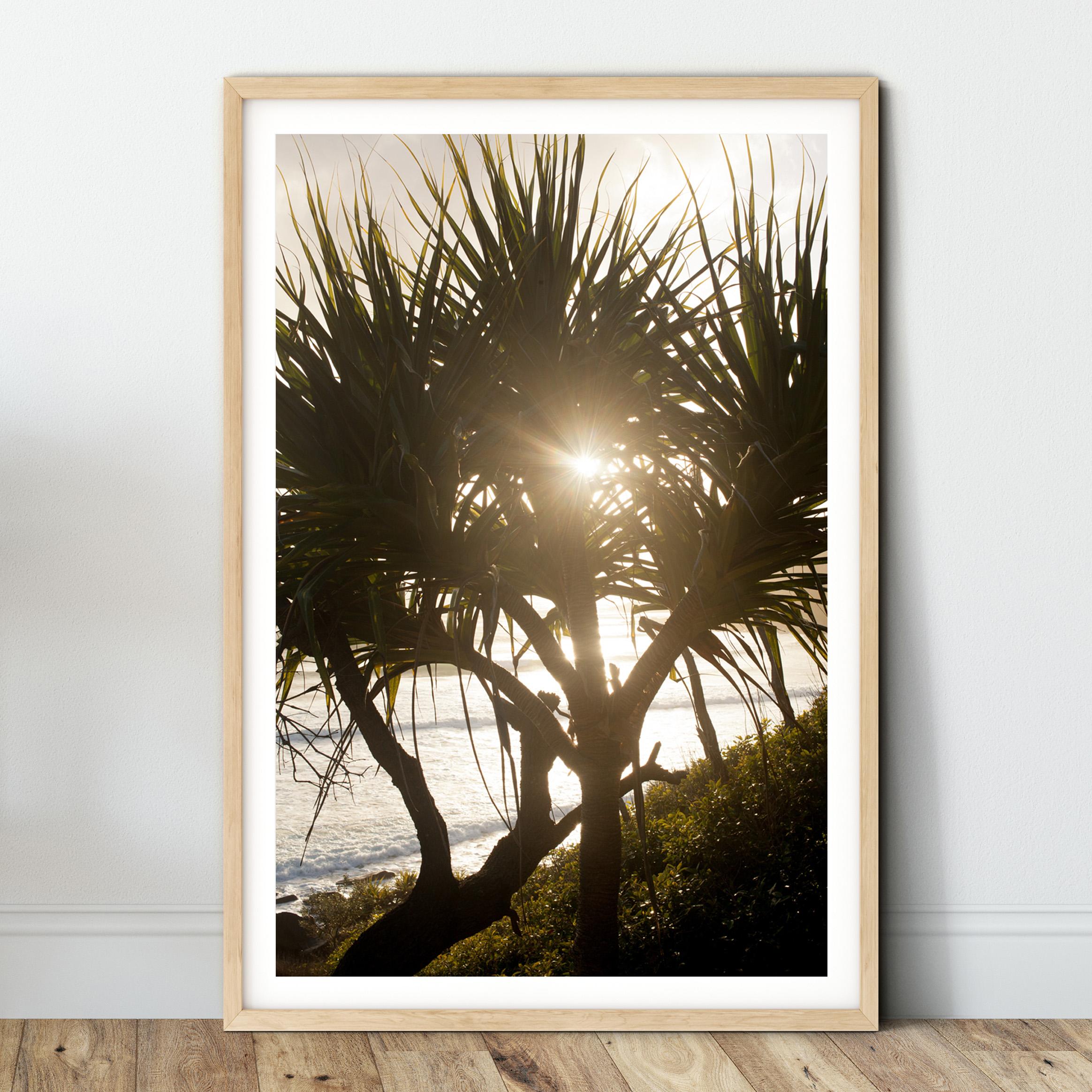 pandanas sunrise - wood.jpg