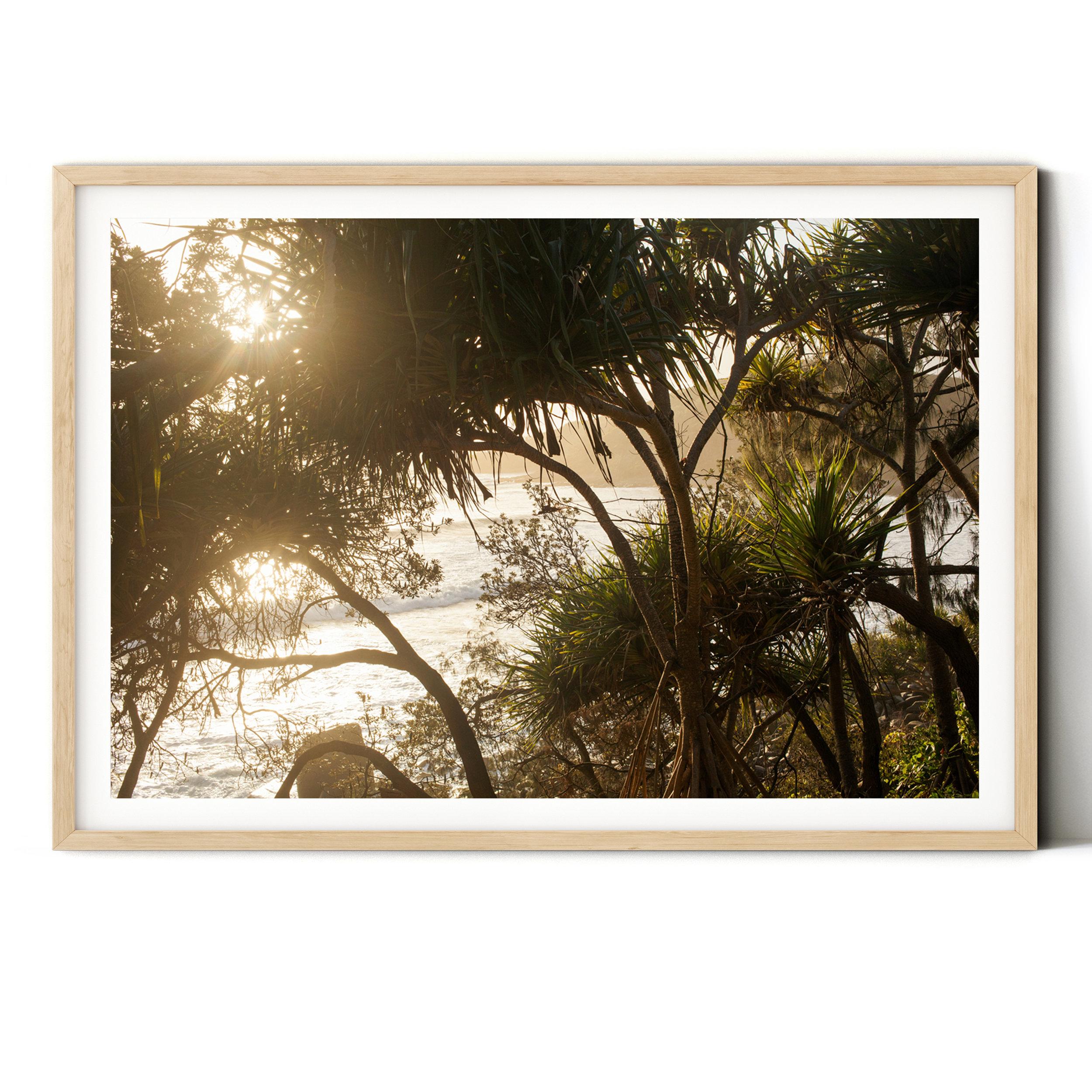 tea tree splendour - wood - plain bg.jpg