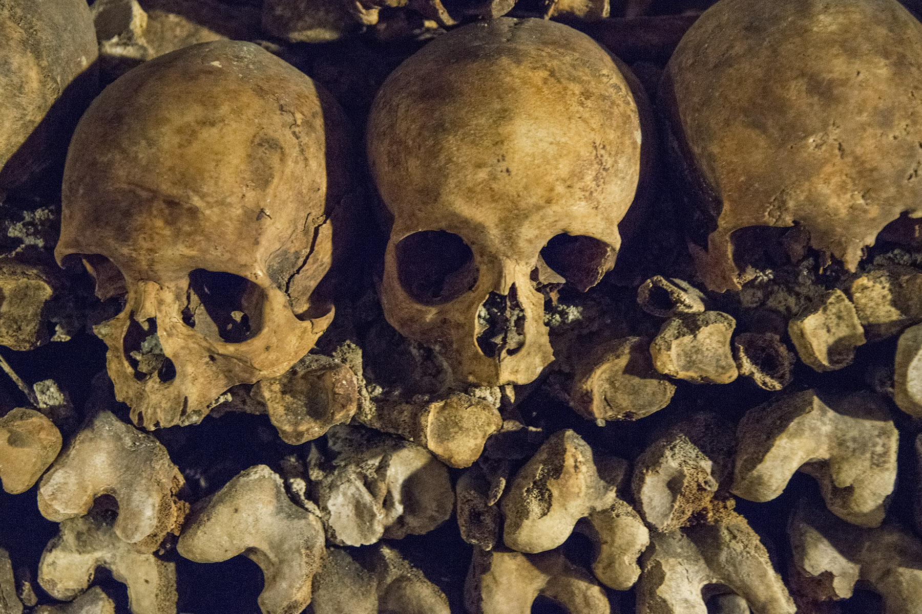 The Paris Catacombs contain 6 million skeletons, arranged in neat piles.  On the public tour, you only see a very small fraction.  My recommendation is to purchase tickets in advance online or come in the late afternoon when it's less crowded.