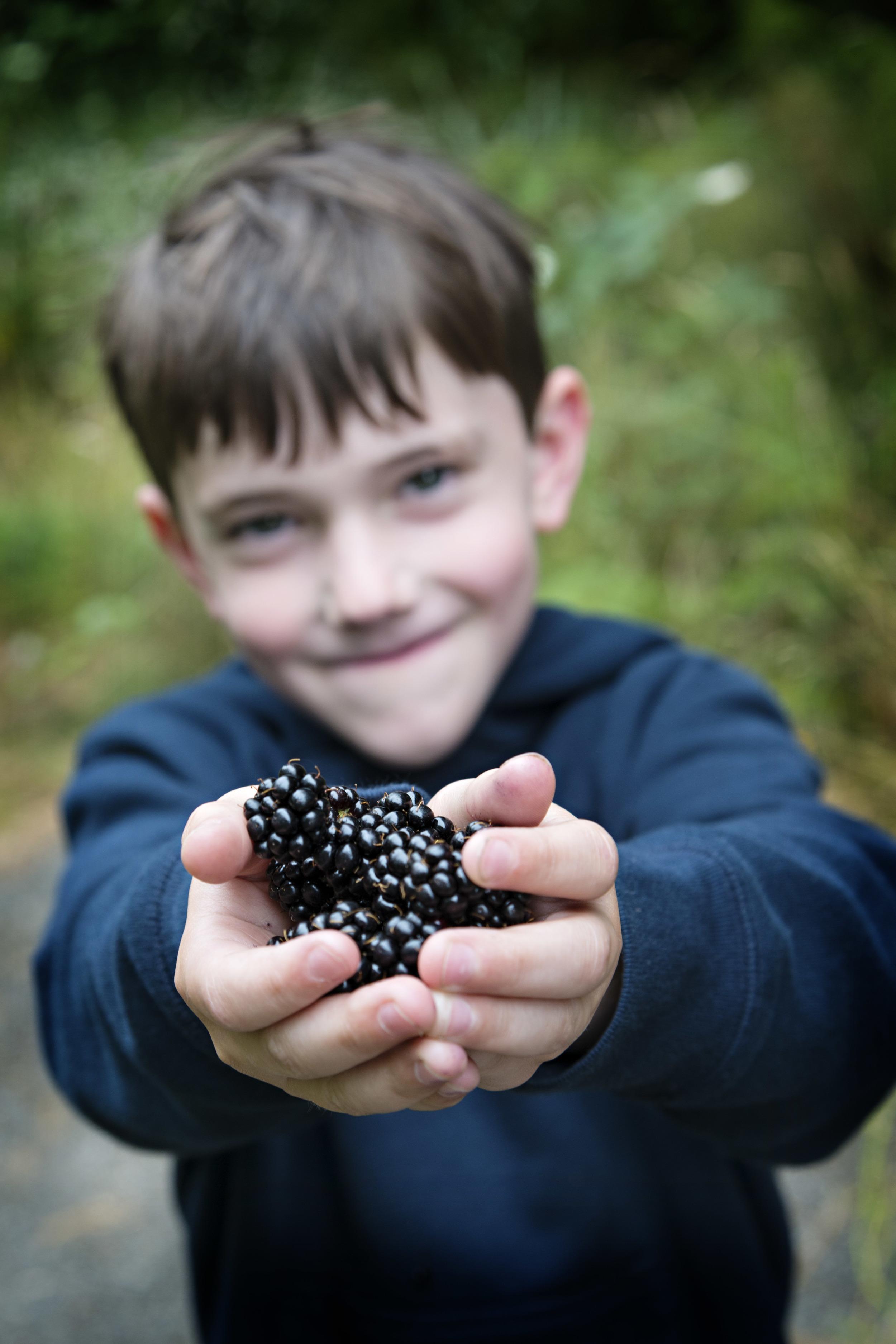 Picking wild blackberries. Nikon D800, Nikkor 24-120mm lens @ 58mm, ISO 250, 1/160 sec, f5.6.