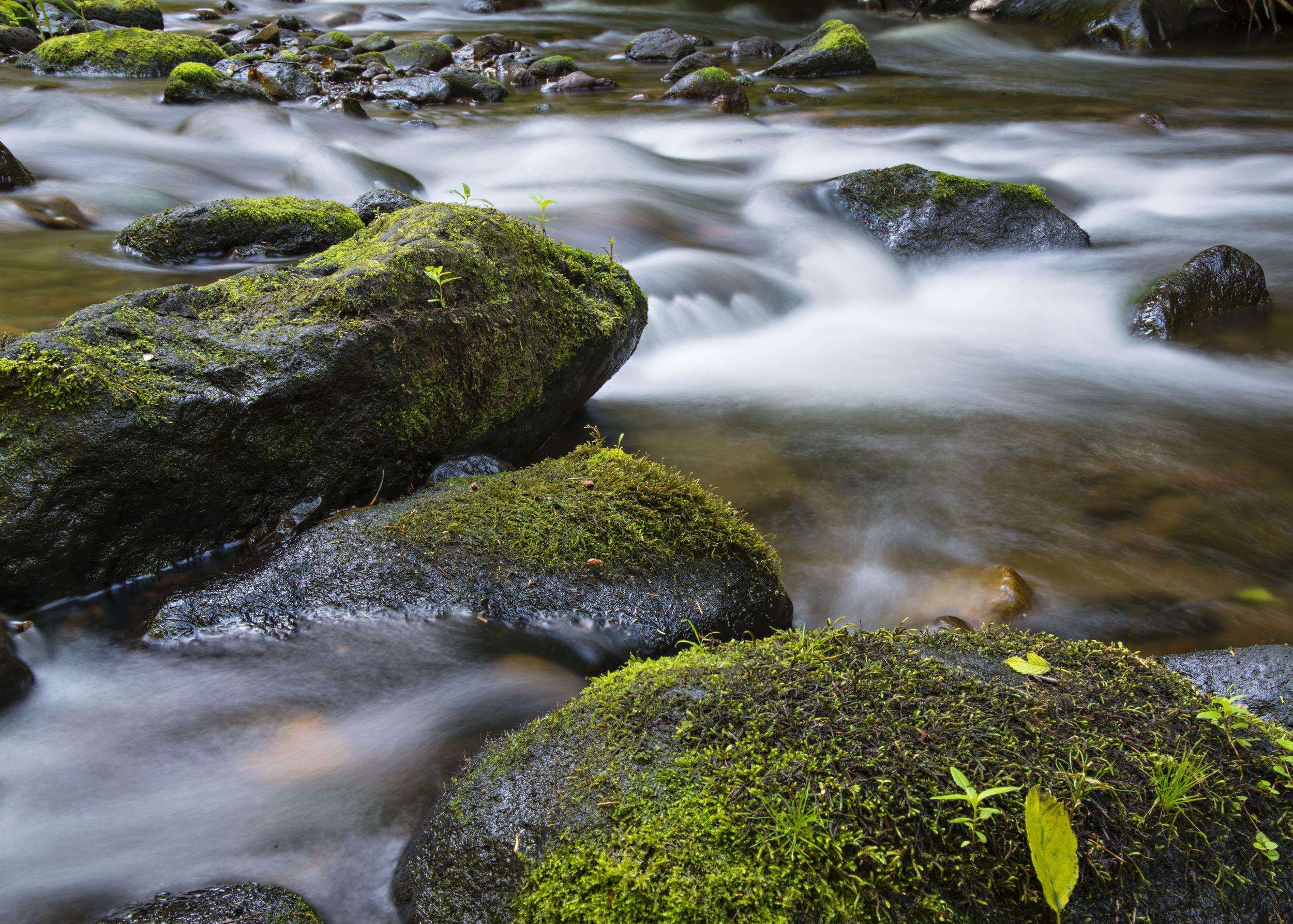 Stream and rocks at Mt. Hood. Nikon D800, Nikkor 24-120mm lens @ 44mm, f22, ISO 50, 4 sec, -2/3 stop exposure adjustment.