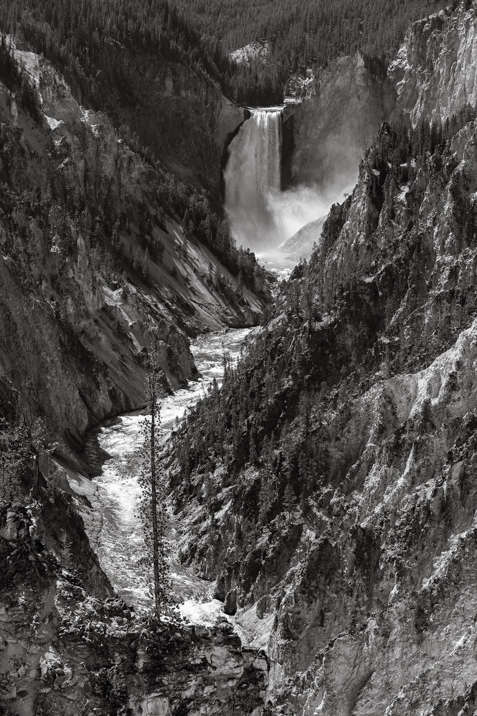 Yellowstone Falls, from Artist's Point. Nikon D800, Nikkor 24-120mm lens @ 85mm, f9, ISO 250, 1/320 sec.