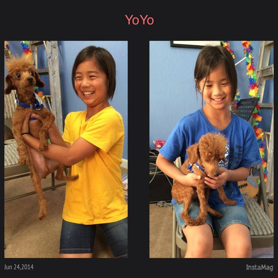 JoJo (now YoYo)