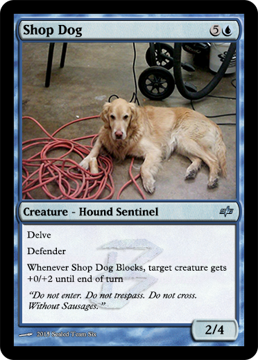 Shop Dog.png