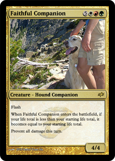 Faithful Companion.png