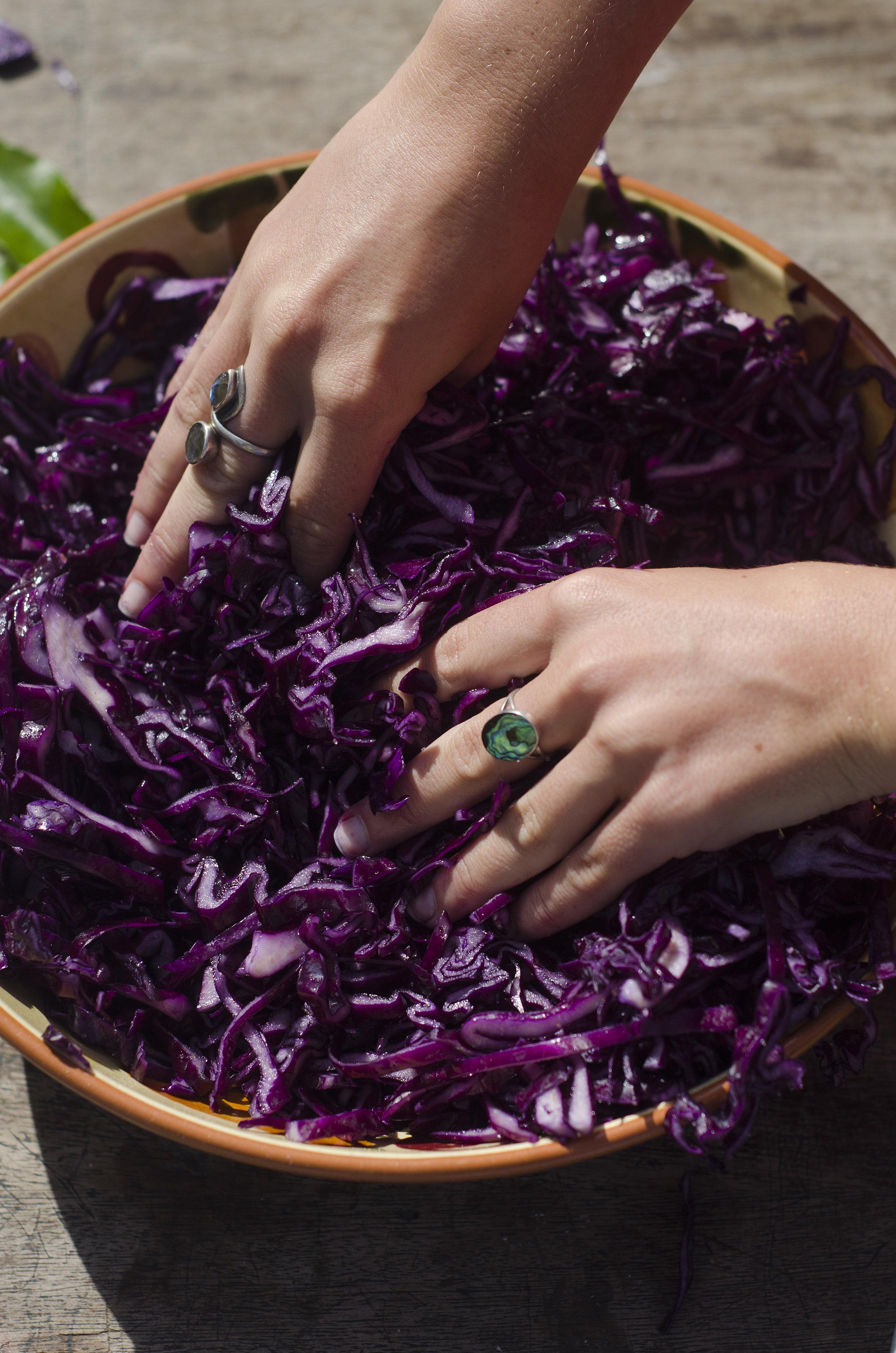 Purple Sauerkraut with Fennel