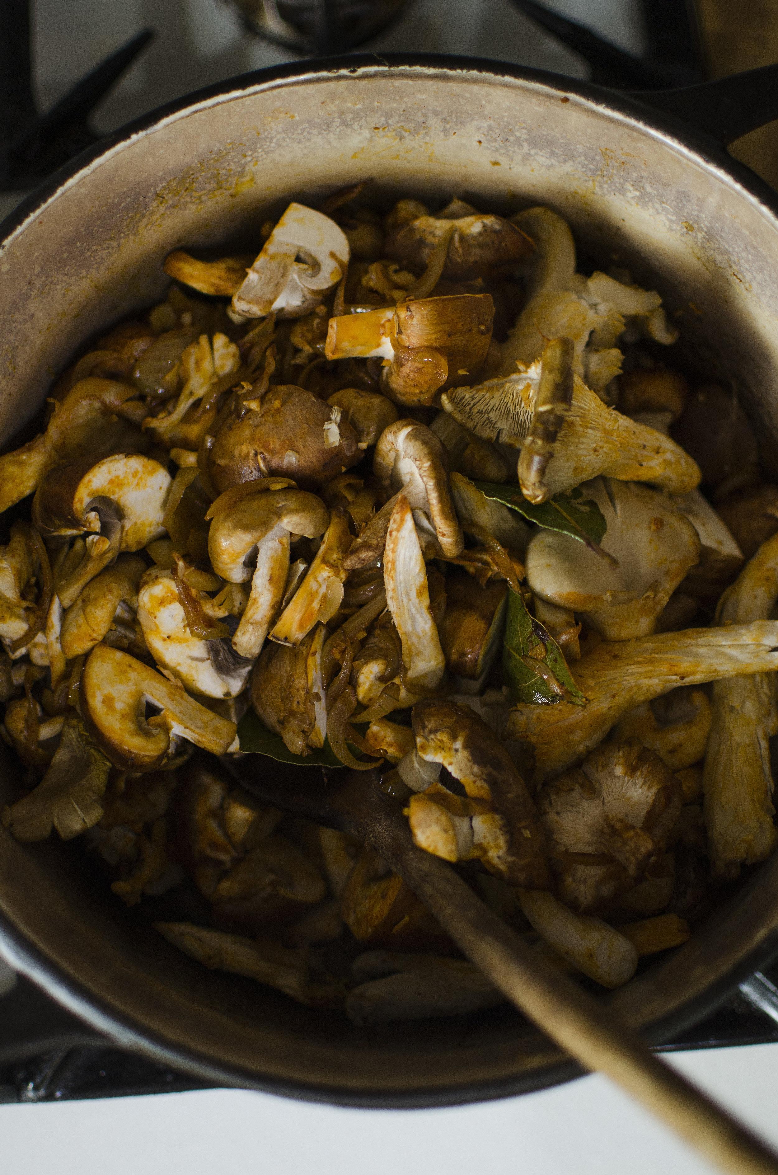 Mushroom Stew with Oyster Shiitake Chesnut