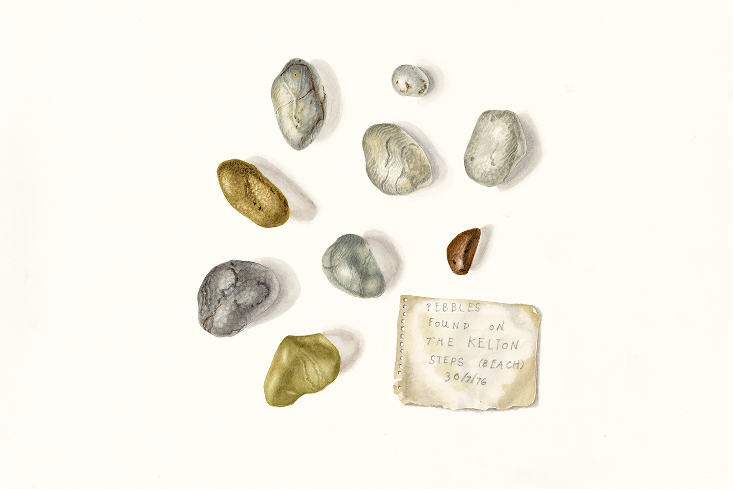 Polishing Stones found in the Big Water of Fleet 29.7.76 (collection of Duncan Matthews), 2010, watercolour on paper