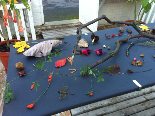 2013.9 peach house installation 1 nature table.jpeg