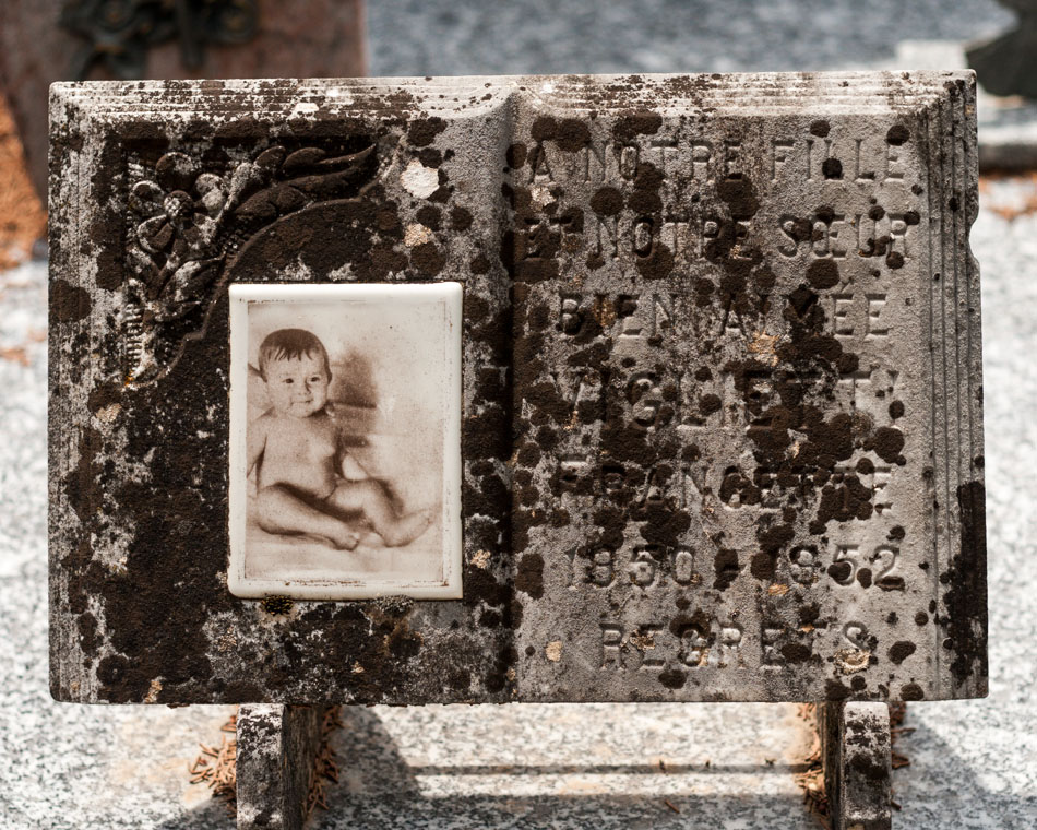 provence-graveyard-(c)-ALASTAIR-PHILIP-WIPER-22