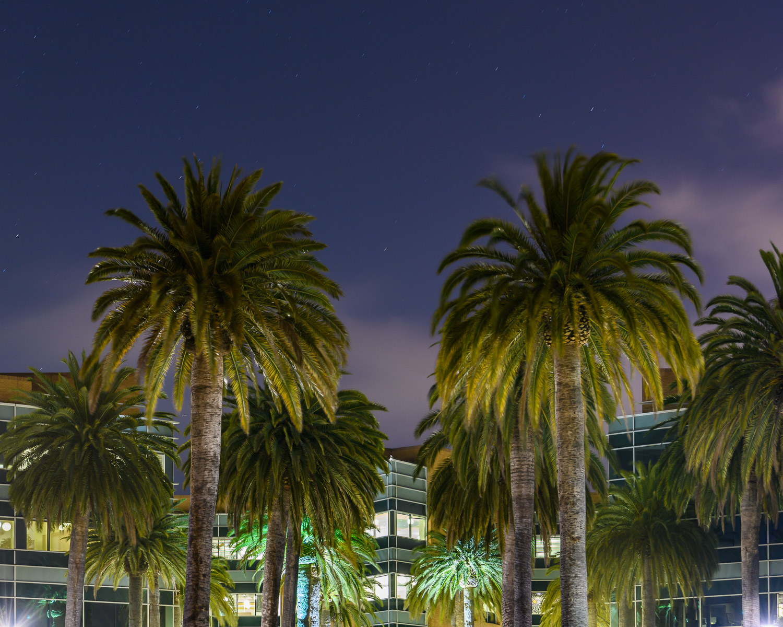 Google headquarters, Mountain View
