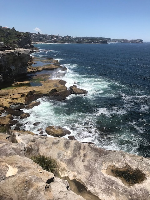 Congee to Bondi Walk