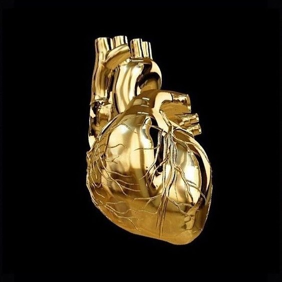 Heart of Gold #heartofgold #vinegargold #dippedingold #art #design #creative #gold