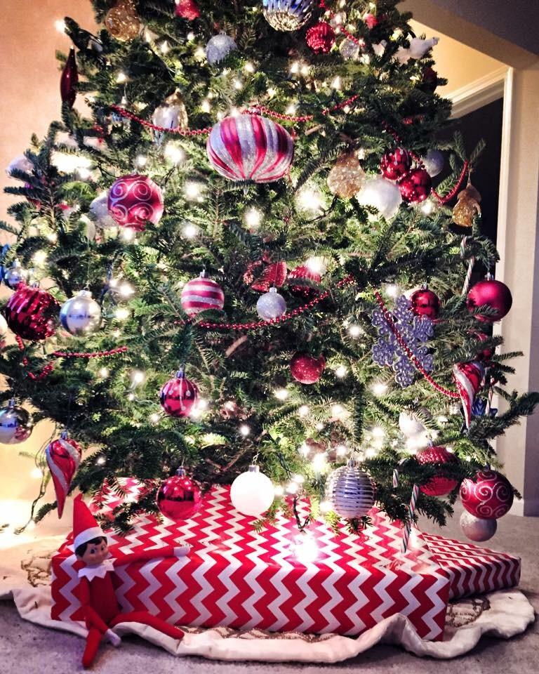 Last year's Christmas tree.