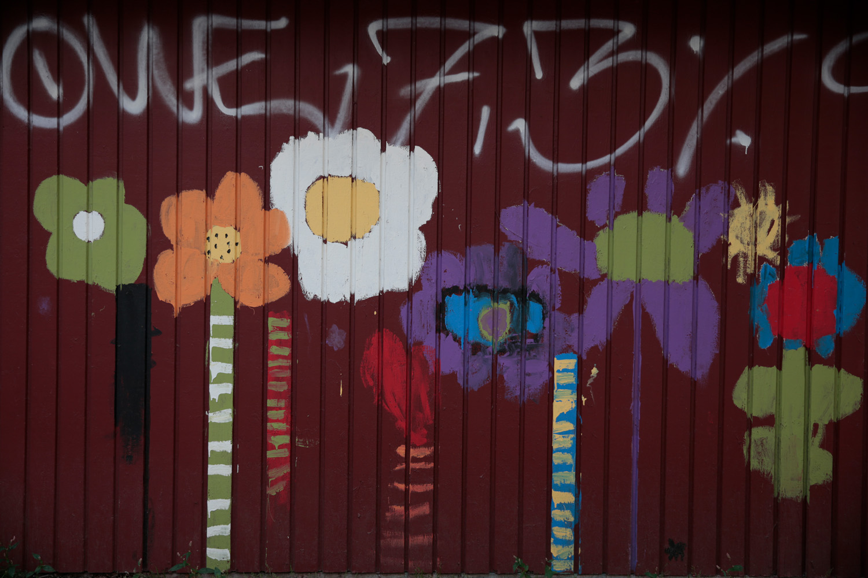 5. asfaltsblomma - dandelion child -