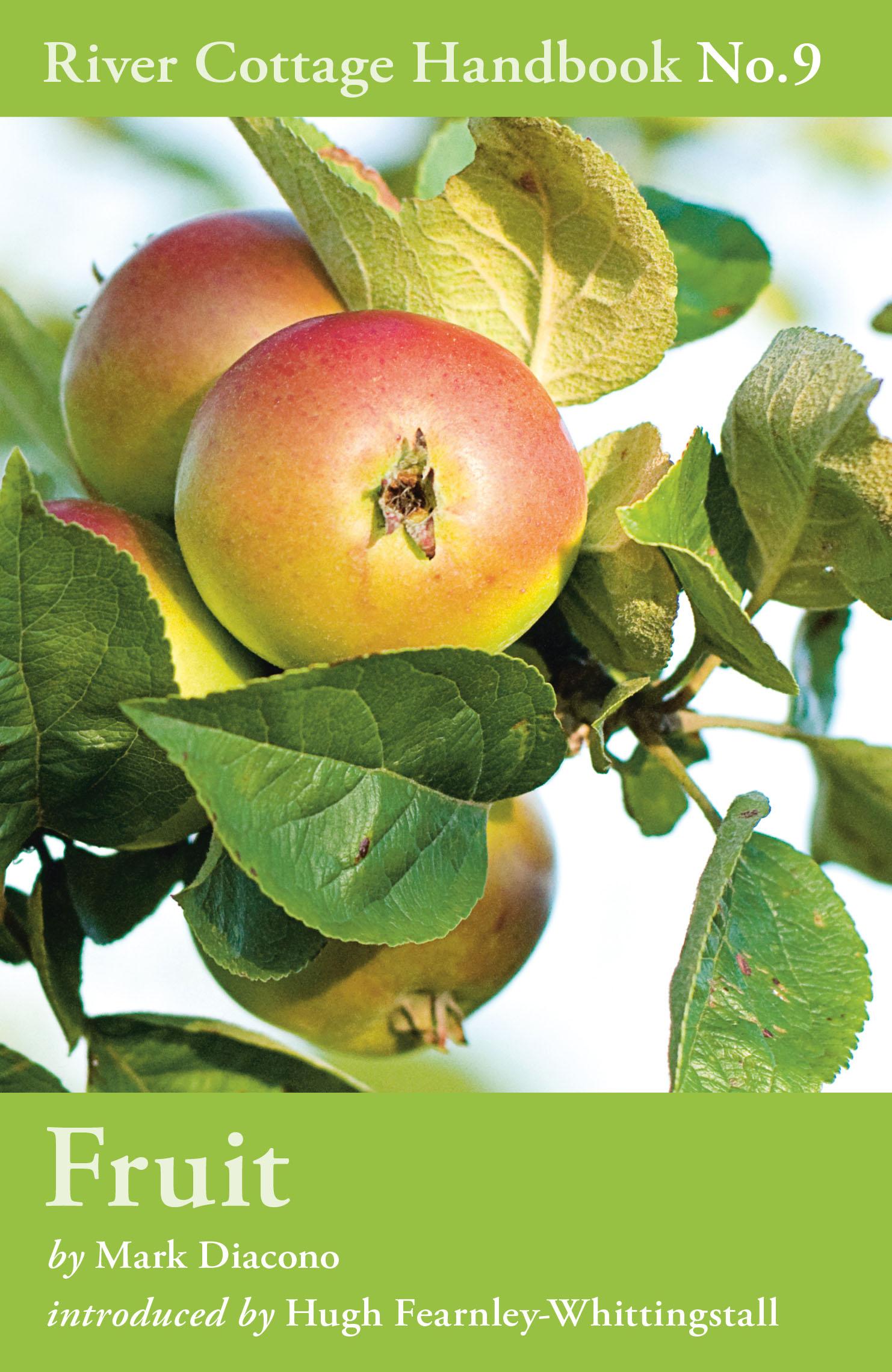 fruit pb.jpg