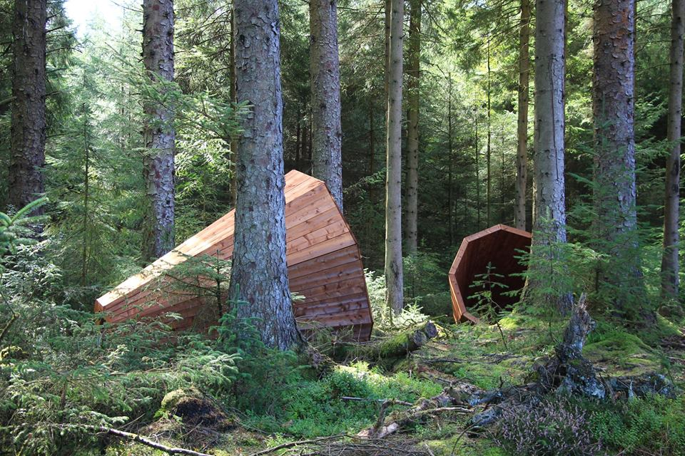 RUUP by Birgit Õigus a co-commission between Forestry Commission England and Lakes Alive Festival.  Photograph by Amelia Harvey