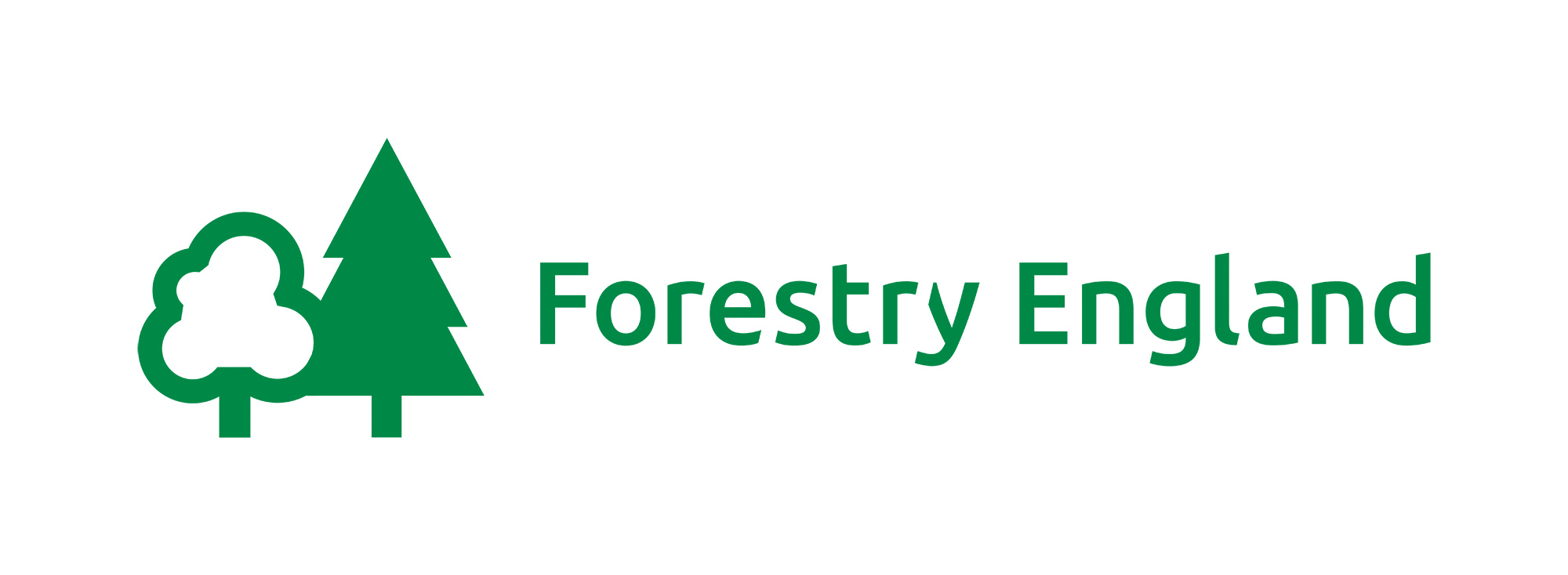 FE digital logos_FE_Primary_Logo_Green.jpg