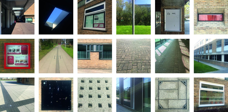 spine images 2.jpg