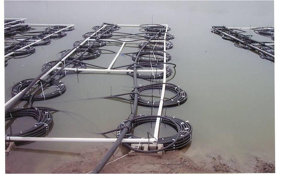 Mohawk Raft.jpg