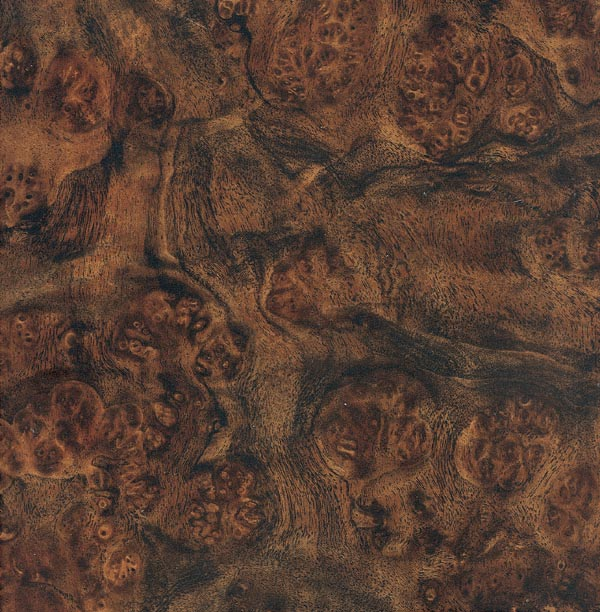 0-fresh-burl-04-medium-brown.jpg