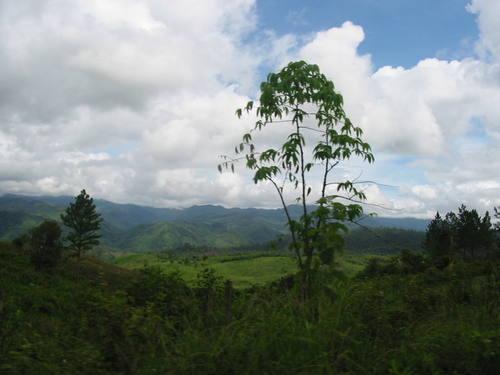 Río Plátano Biosphere Reserve (Honduras) © UNESCO