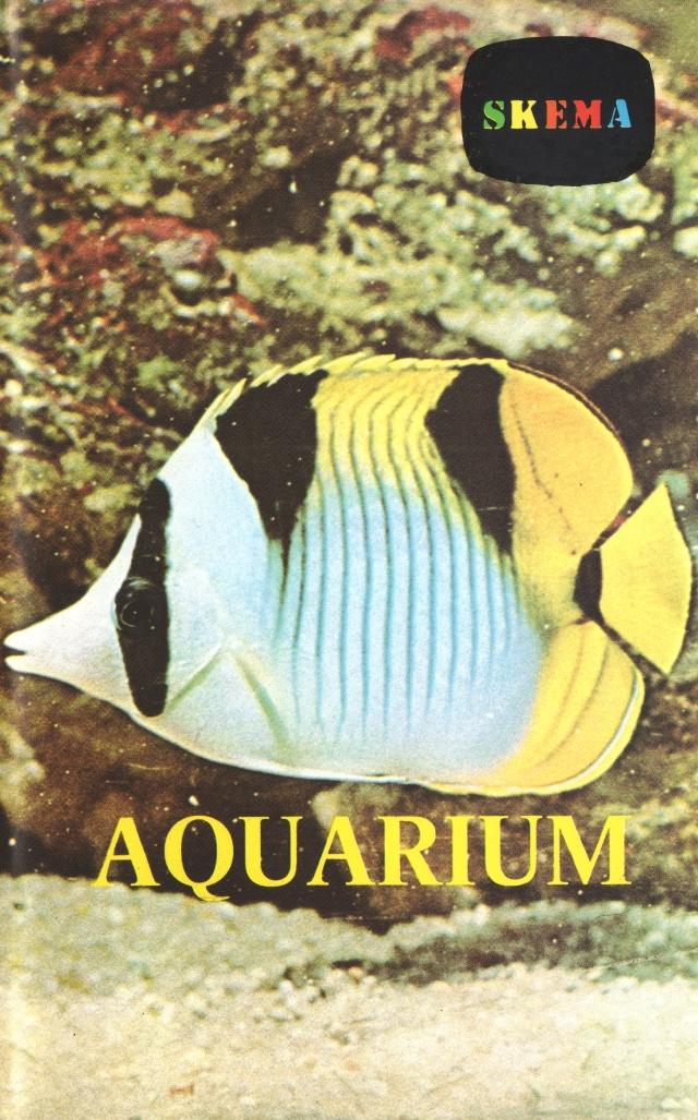 aquarium 600.jpg