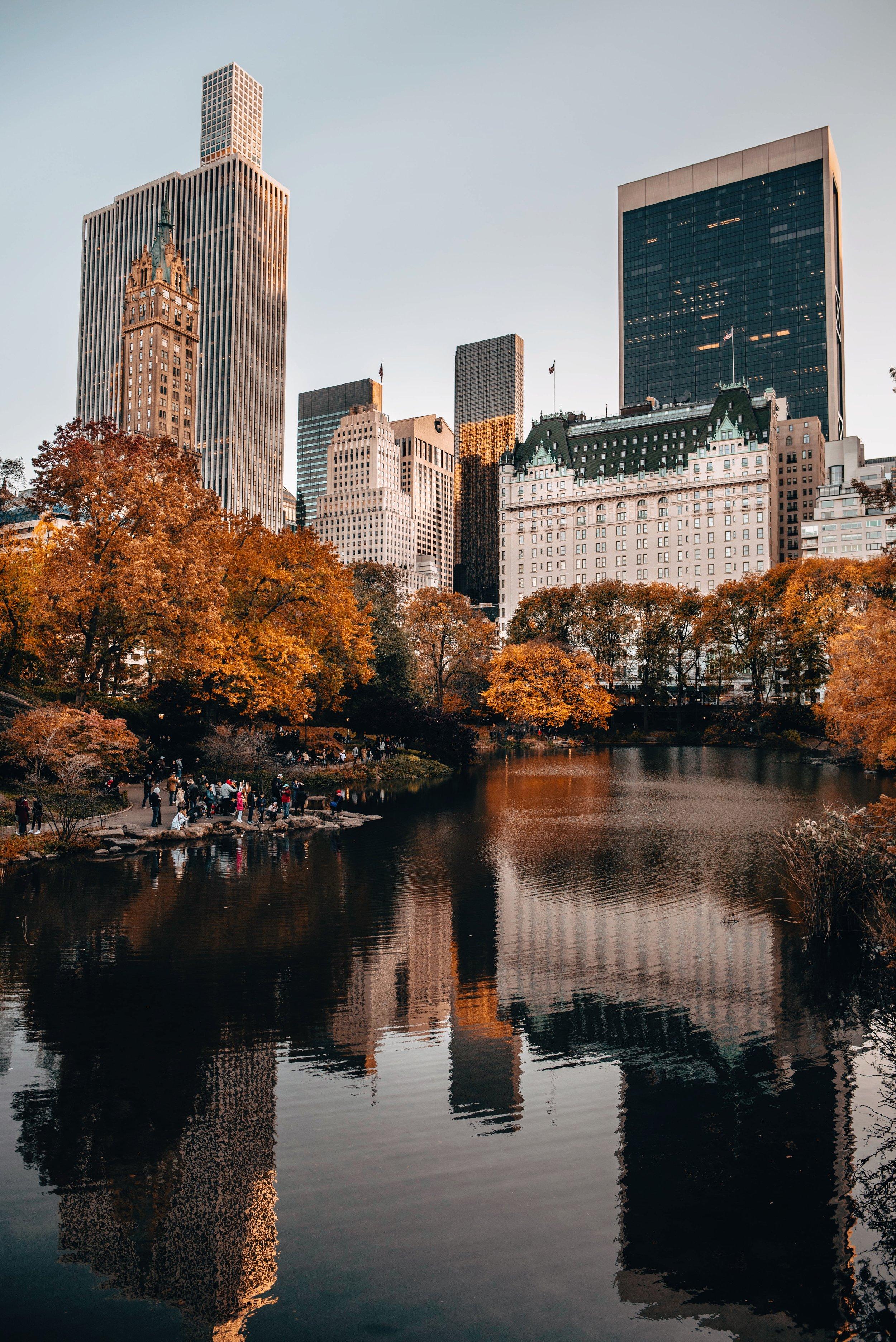 Central Park - The Pond