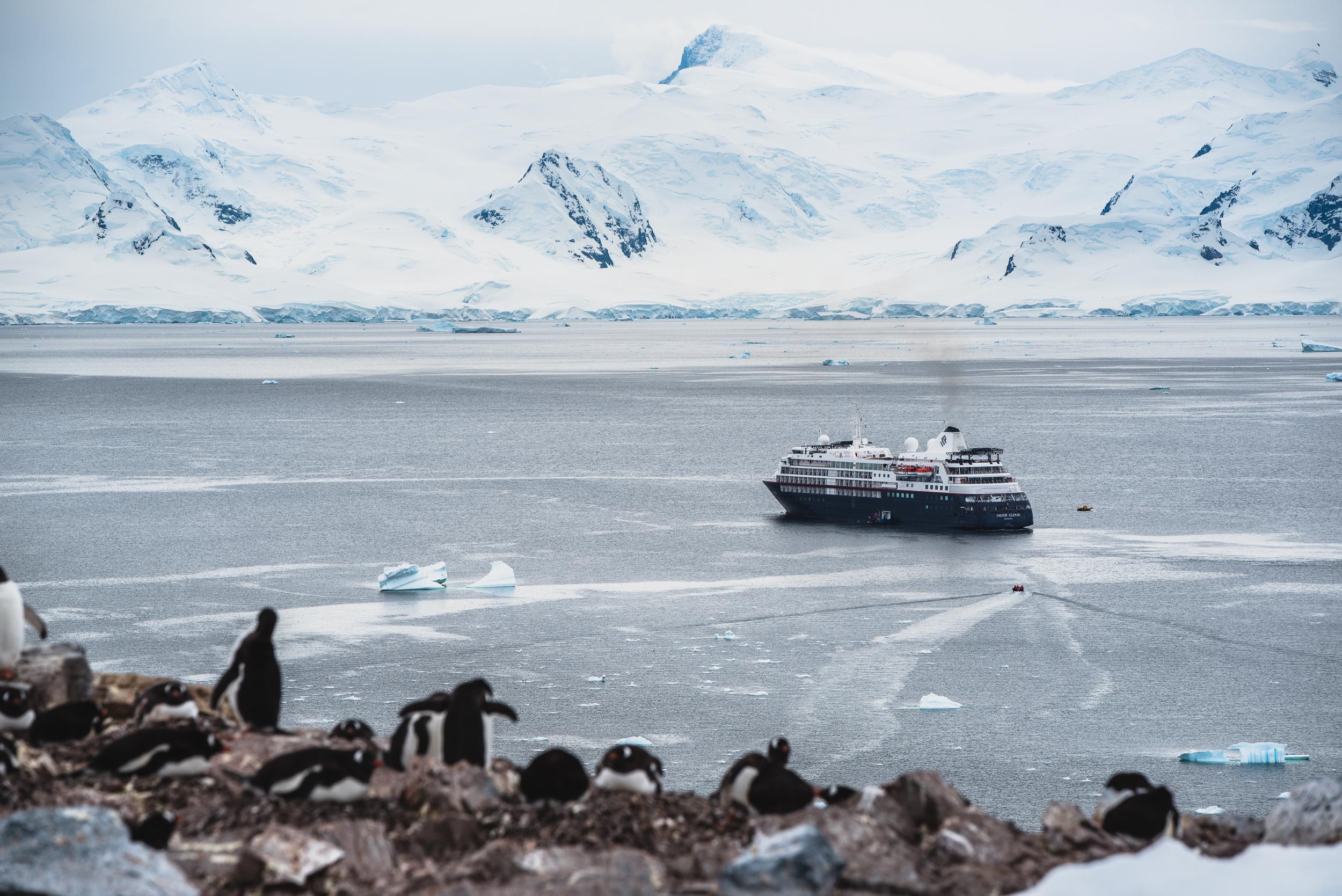joe-thomas-photo-antarctica-travel-new-york-photographer-17.jpg