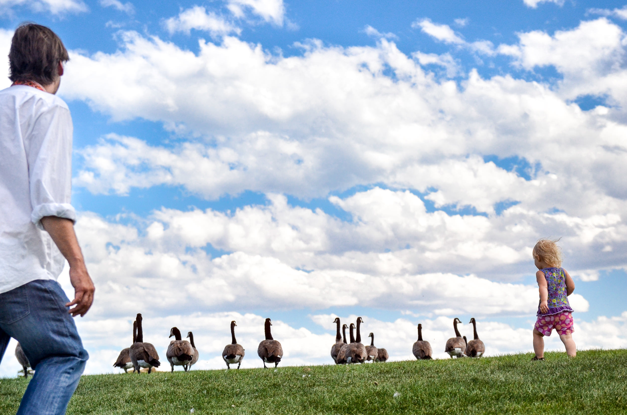 Molly Rees Photo - Documentary Family Photography in Denver, Colorado - girl chasing geese