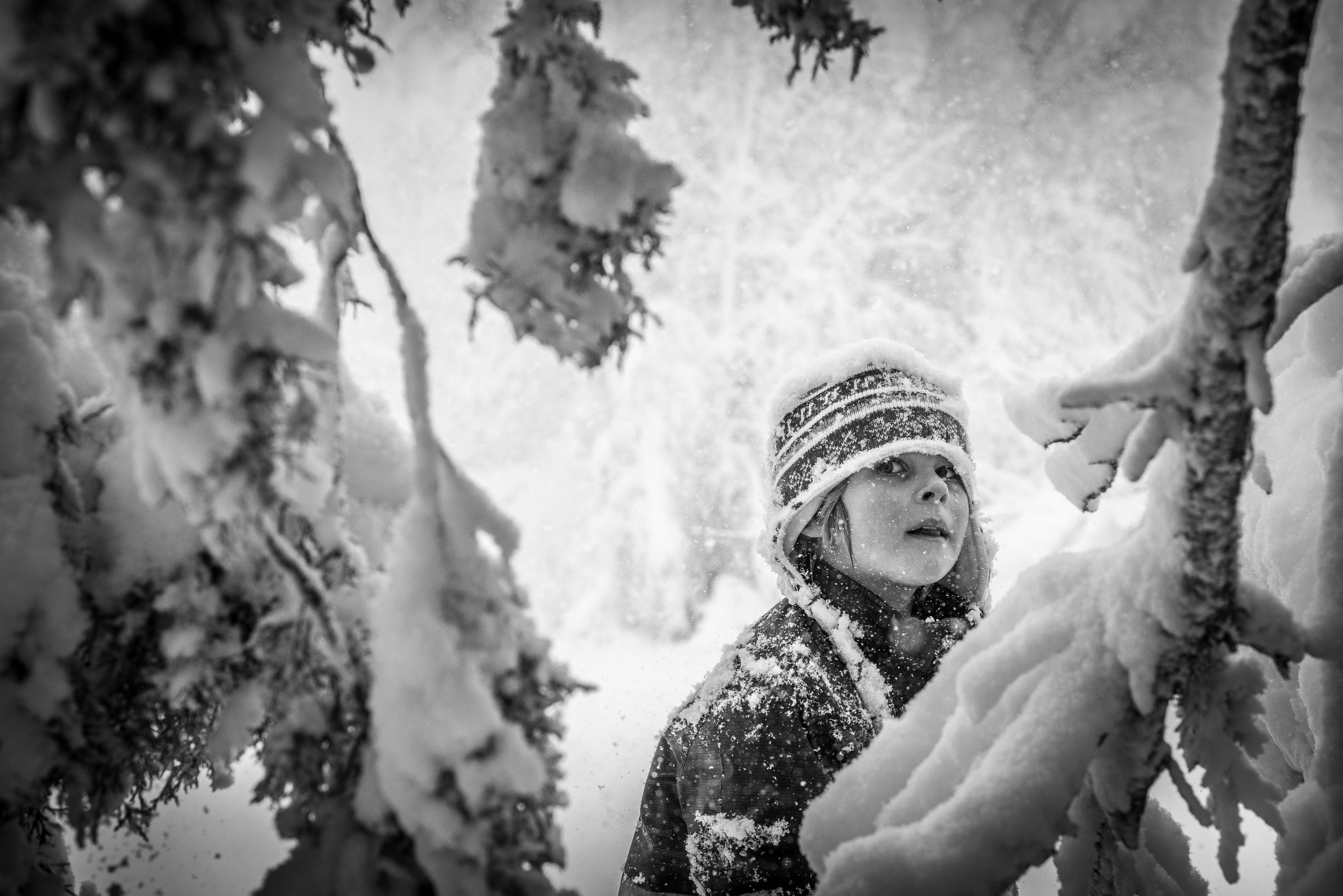 Blog - The Pen & Camera - Gratitude Journal, Denver, Colorado, Colfax - Black and White Documentary Childhood Photography - boy in snowy trees